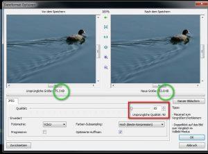 Bilder für Social Media optimal vorbereiten - Größe und Seitenverhältnis bearbeiten mit Gimp und Faststone